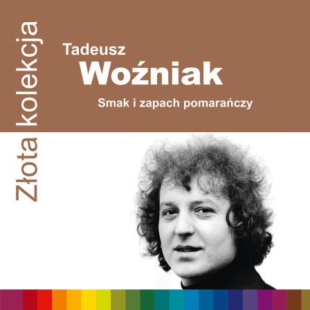 0724352486427 Wozniak ZZK 1500rgb