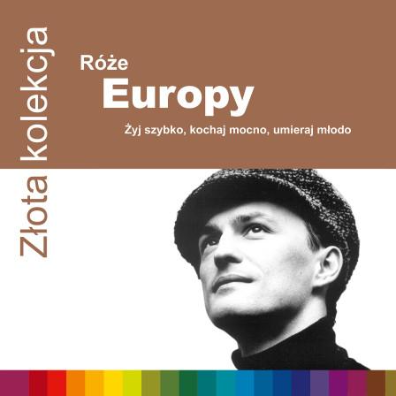 094634032322-RozeEuropy-ZZK-1500rgb