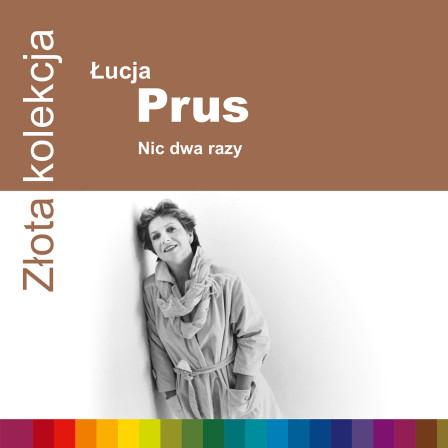 724349977327-Prus-ZZK-1500rgb