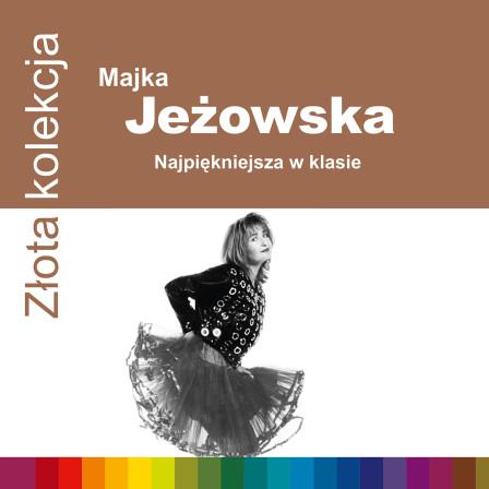 724352486526 Jezowska ZZK 1500rgb