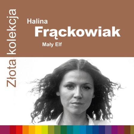 724352556021-frackowiak-zzk-1500rgb