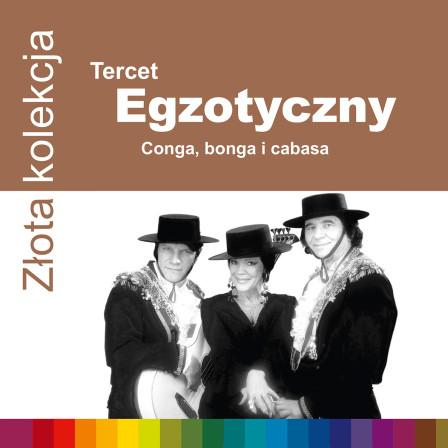 724352556120-tercet-zzk-1500rgb
