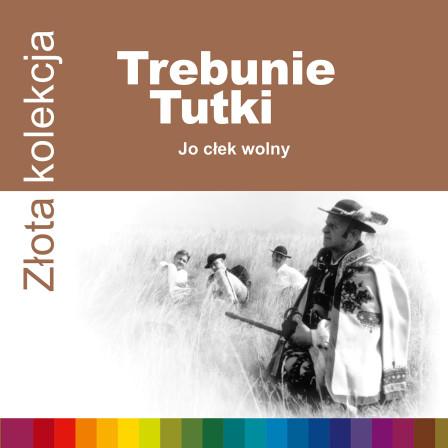 724353049423-Trebunie-ZZK-1500rgb