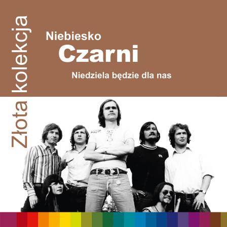 724353379520-NiebieskoCzarni-ZZK-1500rgb
