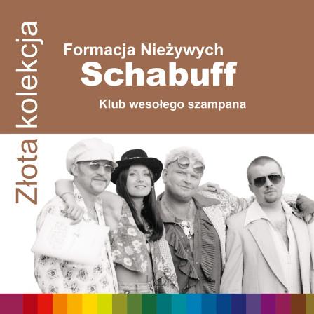 Formacja Nieżywych Schabuff