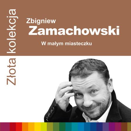 724353773724-zamachowski-zzk-1500rgb