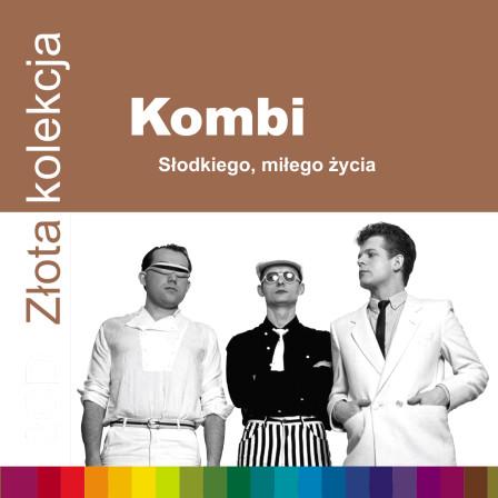 Kombi_ZZK_1500px