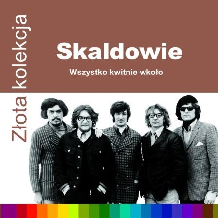 Skaldowie ZZK_booklet