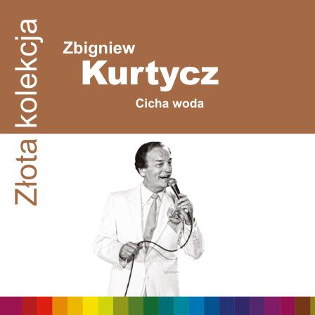 Kurtycz ZZK.qxp_booklet